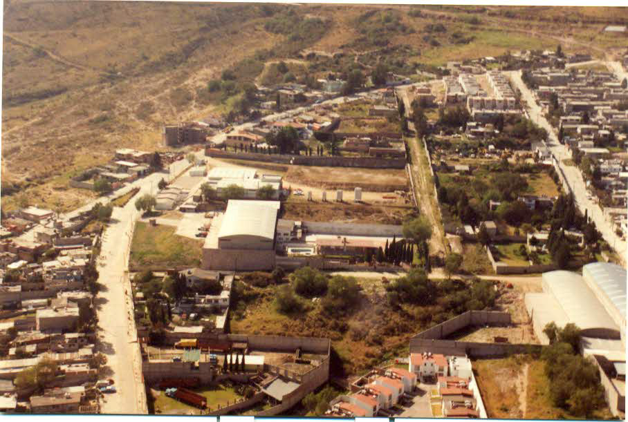 Iris 1988
